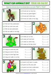 What can animals do? True or False ESL Grammar Handout