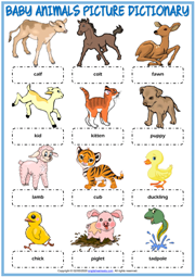 Baby Animals ESL Picture Dictionary Worksheet For Kids