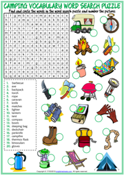 Camping ESL Printable Word Search Puzzle Worksheet