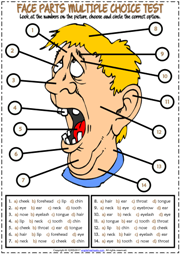 Face Parts ESL Printable Multiple Choice Test For Kids