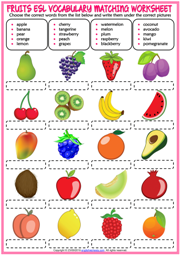 Fruits ESL Vocabulary Matching Exercise Worksheet For Kids