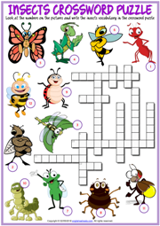 Insects ESL Printable Crossword Puzzle Worksheet for Kids