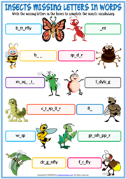 Insects ESL Missing Letters In Words Exercise Worksheet