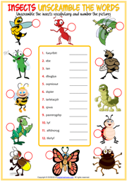 Insects ESL Unscramble the Words Worksheet For Kids