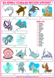 Sea Animals ESL Vocabulary Matching Exercise Worksheets